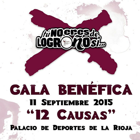 Cartel Gala 12 Causas